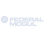 Federal Mogul Rod Bearing Set for LS1