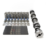 Texas Speed Dual Spring Cam Package for Cathedral Port Heads (LS1/LS2/LS6)