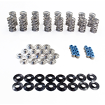 "TSP .700"" Dual Spring Kit w/ PAC 1207X Valve Springs and Titanium Retainers"
