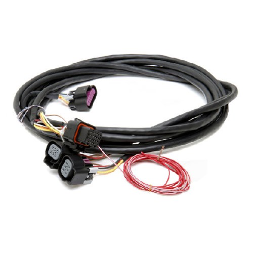[DIAGRAM_38ZD]  558-411 Holley Dominator EFI GM Dual Drive-By-Wire Harness | Gm Efi Wiring Harness |  | Texas Speed