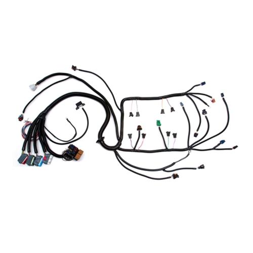05 06 24x e40 gen iv ls2 w 4l60e wiring harness dbw rh texas speed com ls2 wiring harness conversion ls2 coil wiring harness
